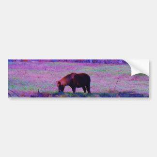 Purple Rainbow Pony Bumper Sticker