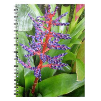 Purple Red Bromeliad Bloom Notebook
