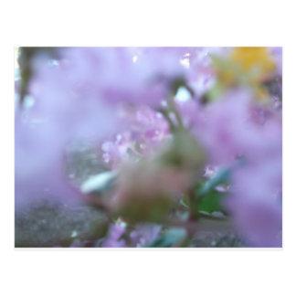 Purple Redbuds Abstract Postcard