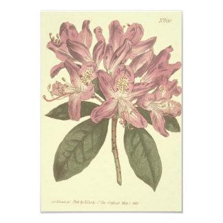 Purple Rhododendron Illustration Card