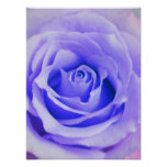 Purple Rose Background Customised Lavender Blank Poster