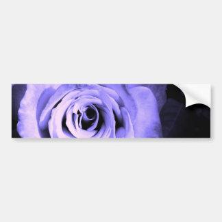 Purple Rose Bumper Sticker