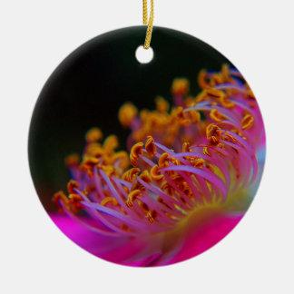 Purple Rose - close Up macro photography Round Ceramic Decoration