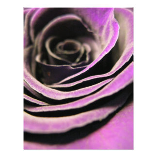 Purple Rose Personalized Flyer