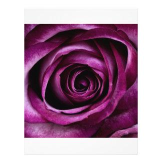 Purple Rose Flyer