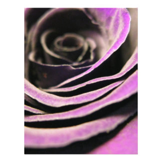 Purple Rose Flyer Design