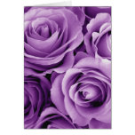 Purple Roses Bouquet Gift Item for Her