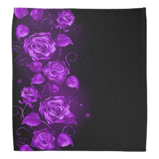 Purple roses on black and purple bandana