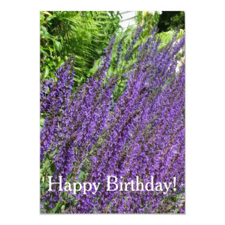 Purple Sage, Purple Salvia Birthday Card