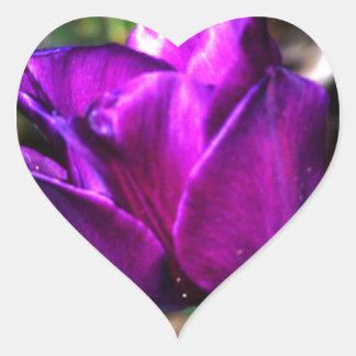 Purple Satin Tulip Heart Stickers