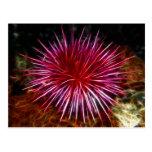 Purple Sea Urchin Post Card