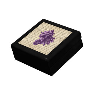 Purple shell on vintage letter  background gift box