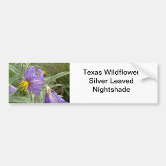 Purple silver-leaved nightshade flowers bumper sticker