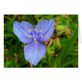 Purple Spiderwort Flower Greeting Card