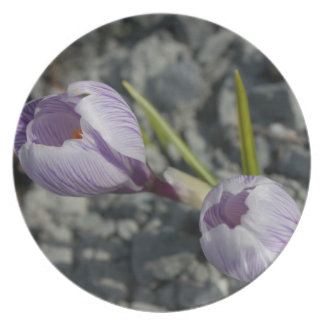 Purple Spring Dinner Plate