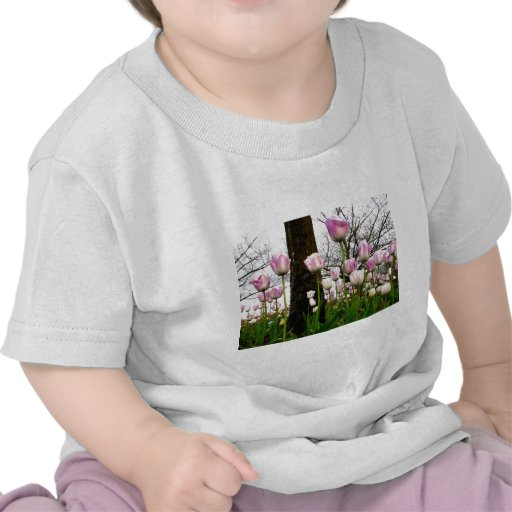 Purple Spring Shirt