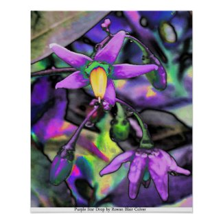 Purple Star Drop