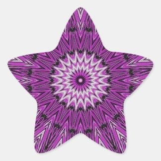 Purple Star Gazer Kaleidoscope Star Sticker