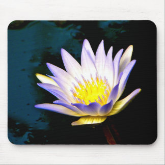 Purple Tipped Water Lily mousepad