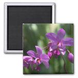 Purple Tropical Flowers Magnet