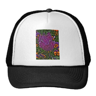 purple tulip 2 cap