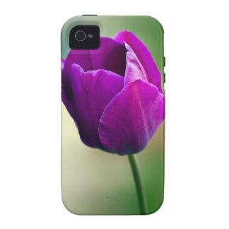Purple Tulip Case-Mate iPhone 4 Cover