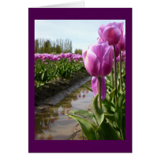 Purple Tulip Fields & Reflections Note Card