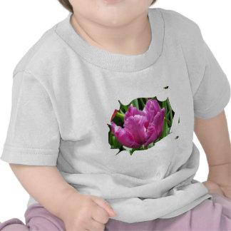 Purple Tulip Shirts