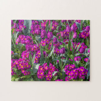 Purple tulips and primroses photo puzzle