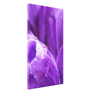 Purple Tulips Gallery Wrapped Canvas