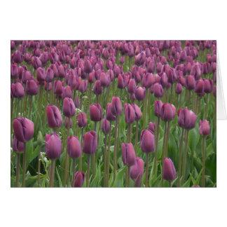 purple tulips note card