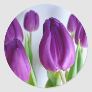 Purple Tulips Classic Round Sticker