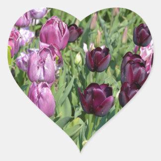 Purple tulips heart sticker