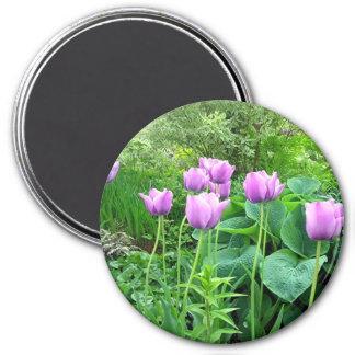 Purple Tulips Magnet