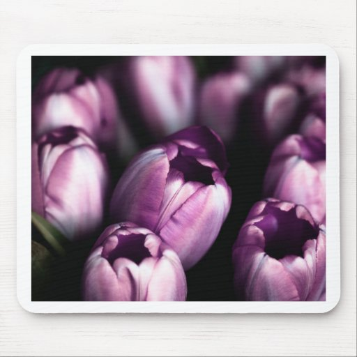 Purple Tulips Mouse Pad