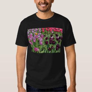 Purple tulips tshirts