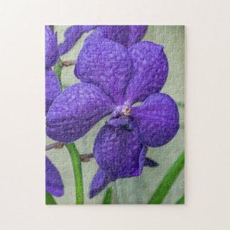 Purple vanda orchids photo puzzle