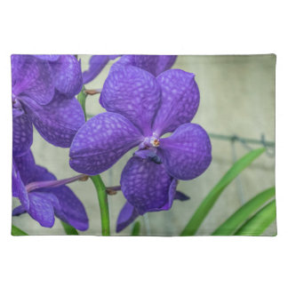 Purple vanda orchids placemat
