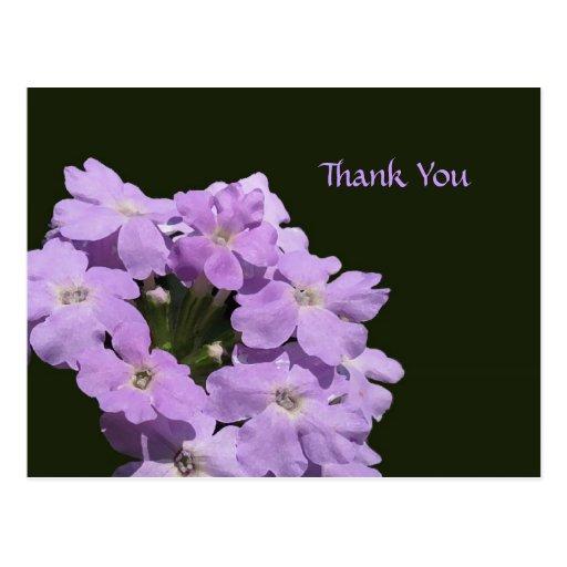 Purple Verbena Floral Thank You Postcard