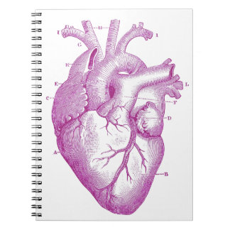 Purple Vintage Heart Anatomy Notebook