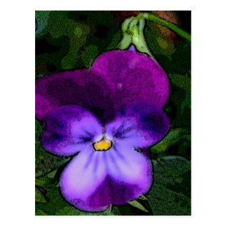 Purple Violet Flower Art Postcard