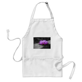 Purple Water Lily 002 Black and White Background Aprons