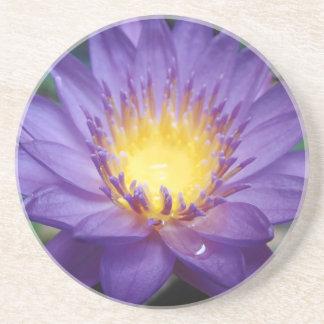 Purple Water Lily Sandstone Drink Coaster