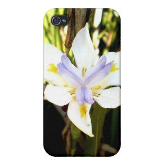 Purple White Iris Flower iPhone 4 Cases