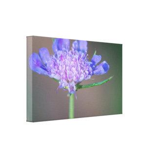 Purple wild flower canvas print