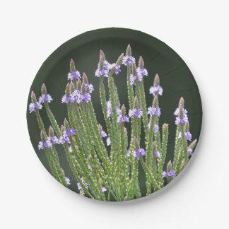 Purple Wildflower 7 Inch Paper Plate