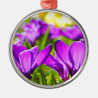Purple & Yellow Crocus flowers Silver-Colored Round Decoration