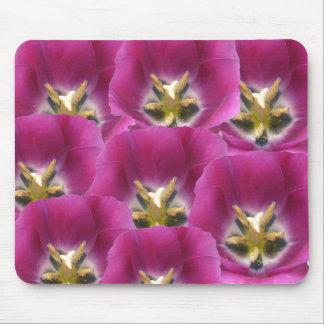 purplemajestic, purplemajestic, purplemajestic,... mouse pad