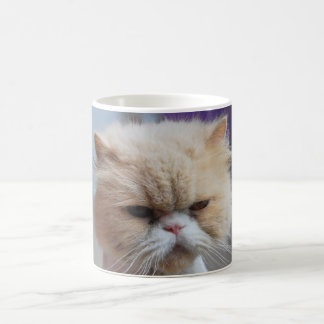 Purr-fect Persian Cat Coffee Mug