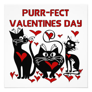 Purr-fect Valentines Day Invitation